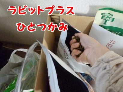 P1100042_convert_20120111110845.jpg