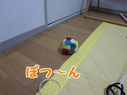 P1100146_convert_20120115203345.jpg