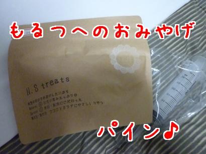 P1100379_convert_20120208194457.jpg