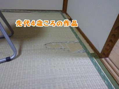 P1100397_convert_20120211210352.jpg