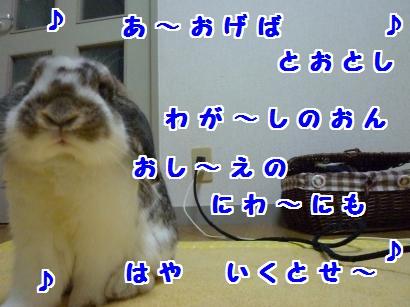 P1100713_convert_20120315183343.jpg