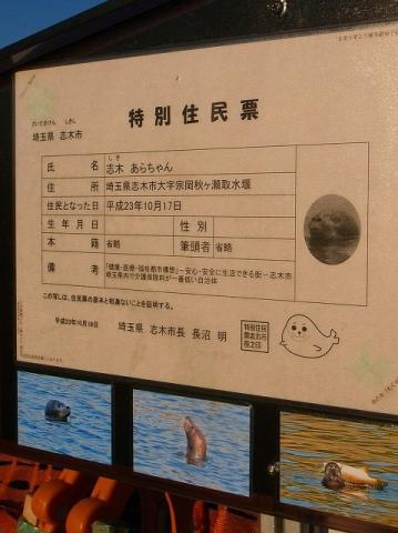 2011-10-26 あらちゃん探し 005