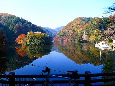 2011-11-24 鎌北湖 013