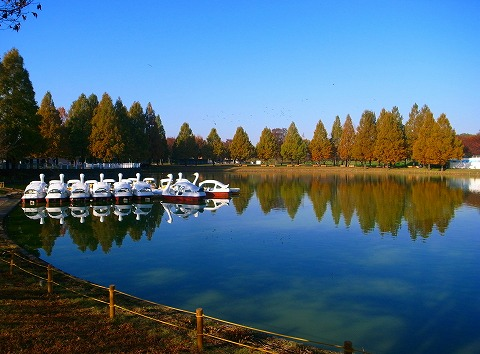 2011-11-24 川越スナップ 002