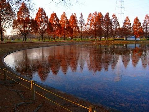 2011-12-15 川越スナップ 044