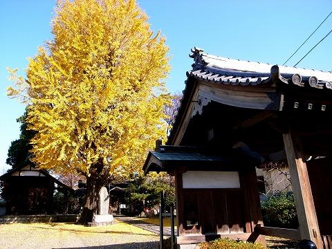 2011-12-15 川越スナップ 007