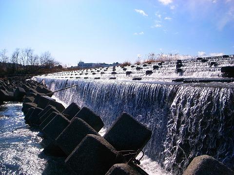 2012-01-25 入間川cr 015