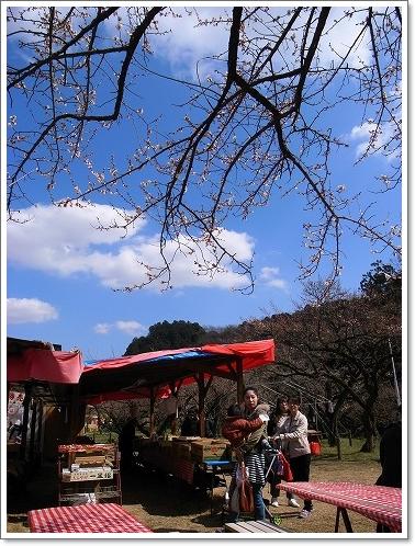 2012-03-14 青梅梅林 087
