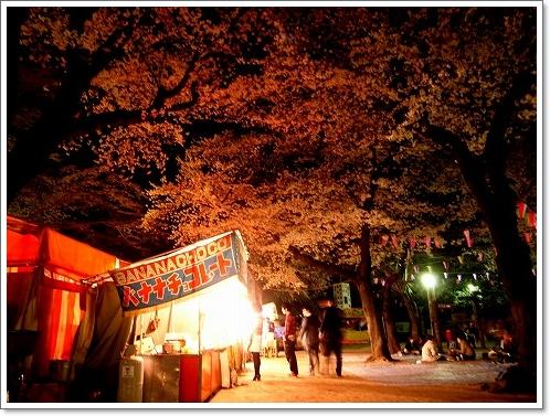 2012-04-10 喜多院夜桜 016