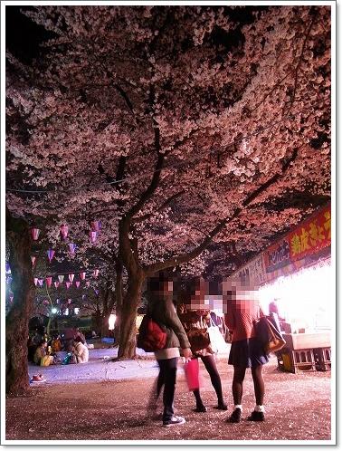 2012-04-10 喜多院夜桜 004