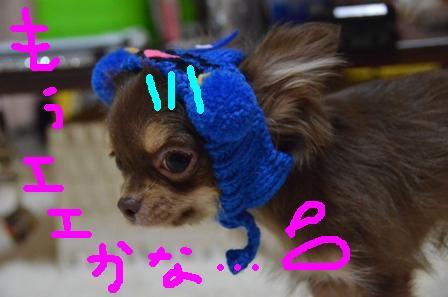 DSC_4555.jpg