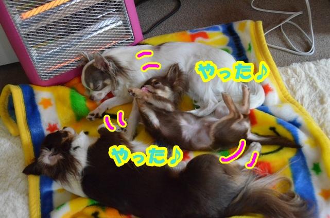 DSC_5571.jpg