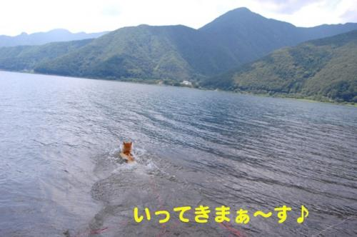 DSC_0149_20110709212226.jpg