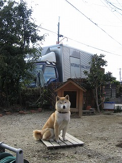 大きなトラックが来ました