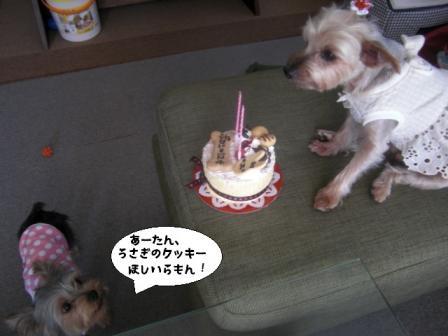 birth5.jpg