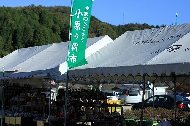 IMG_7115小原四季桜