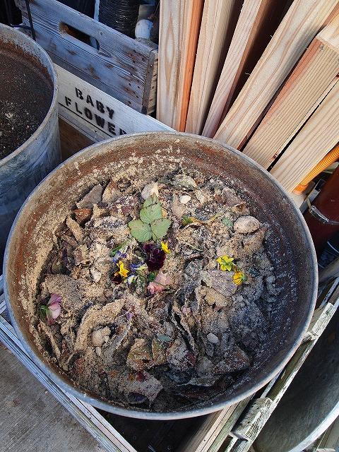028米ぬか堆肥