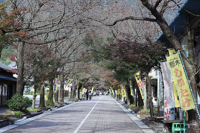 IMG_7368華厳寺