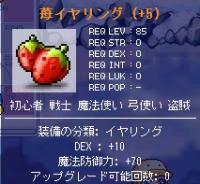 DEX10苺イヤ