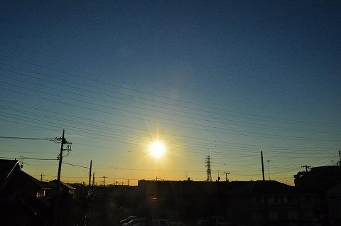 DSC_7737.jpg