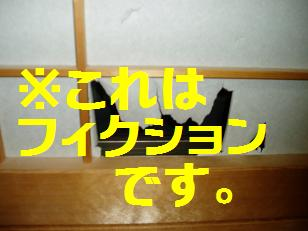 P7200128.jpg