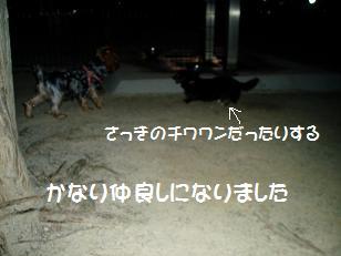 P7300117.jpg