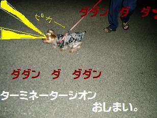 P7300120.jpg