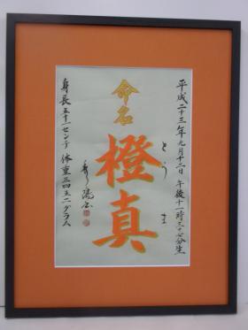 繧ソ繝槭■繧・s闡幄・ソ豌エ譌城、ィ+002_convert_20111206114549
