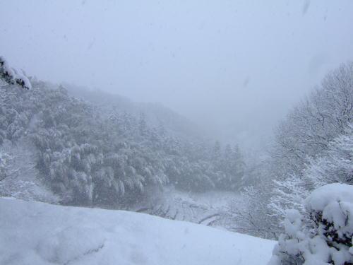 しんしんと降り積もる雪