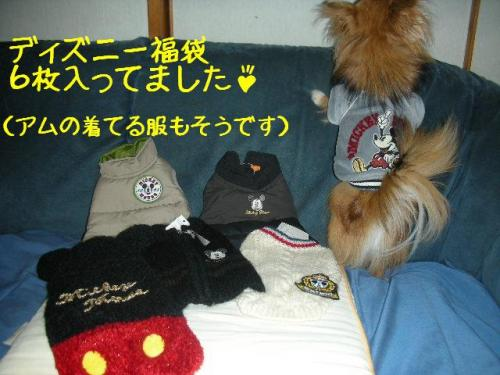200801021fukubukuro.jpg