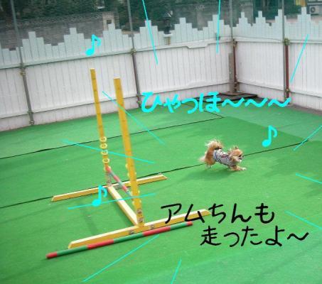 2008012814.jpg