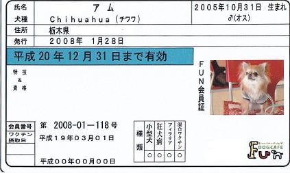 200801282.jpg