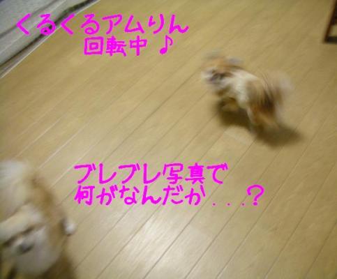 200802143.jpg