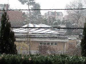 ブログ雪の日2