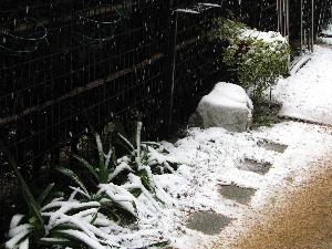 ブログ用雪2・3-3