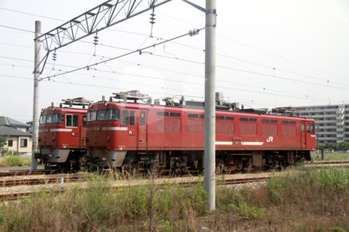 130607-309x.jpg