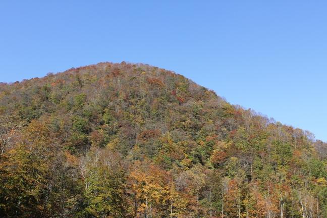 登山口付近