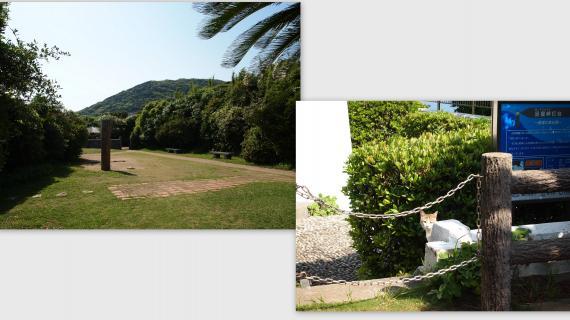 2011-05-1824_convert_20110604003038.jpg