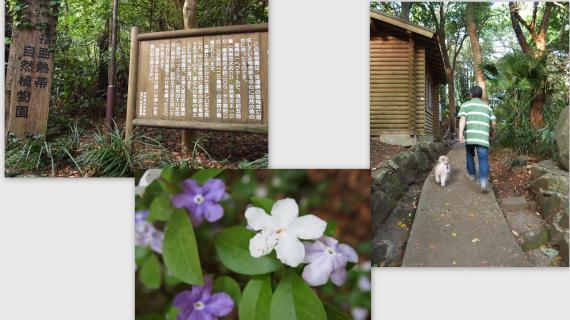 2011-05-1917_convert_20110608022316.jpg