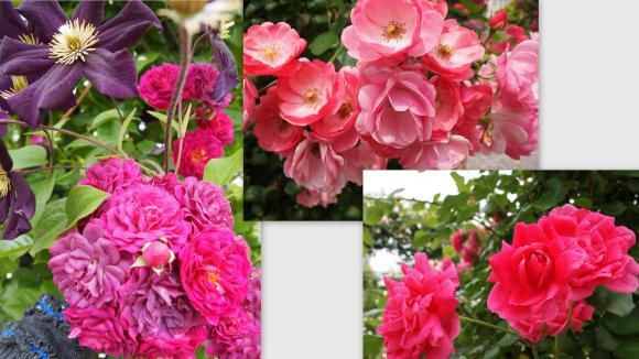 2011-06-024_convert_20110621004214.jpg