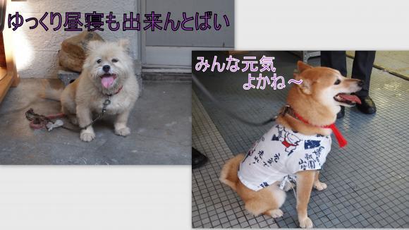 2011-07-127_convert_20110714010834.jpg