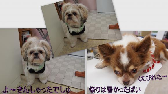 2011-07-128_convert_20110714010855.jpg