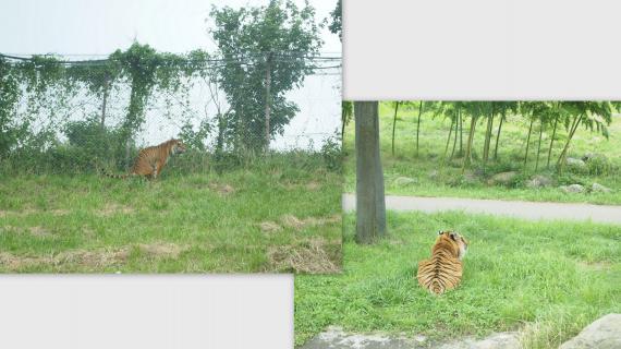 2011-07-2414_convert_20110728143745.jpg