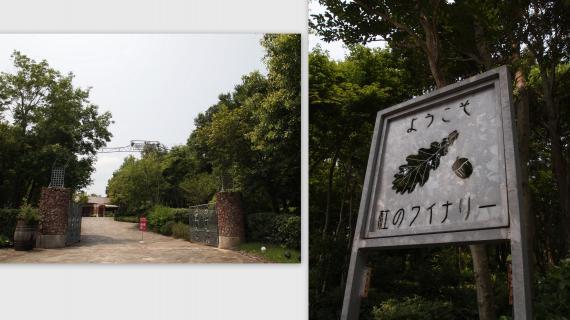 2011-07-243_convert_20110726015724.jpg