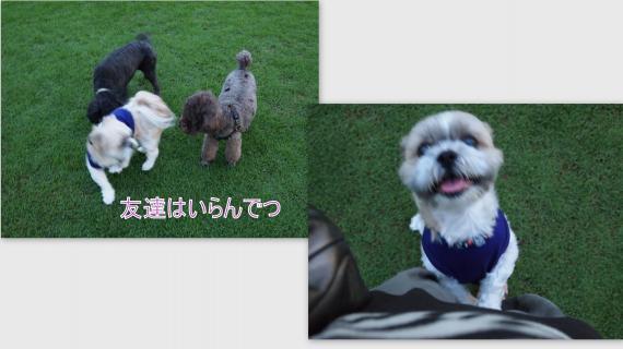 2011-08-21_convert_20110824004414.jpg