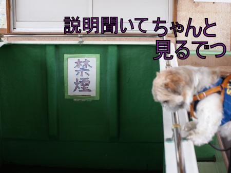 ・搾シ善5183896_convert_20110601031429