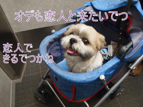 ・搾シ鳳5183940_convert_20110601190313