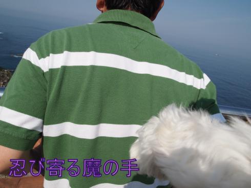 ・搾シ撤5183995_convert_20110604003412