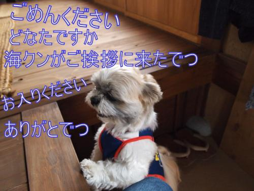 ・搾シ撤5204219_convert_20110609180507