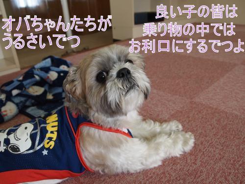 ・搾シ鳳5204245_convert_20110609180927
